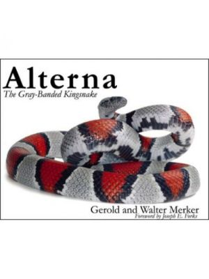Alterna The Grey Banded Kingsnake Book