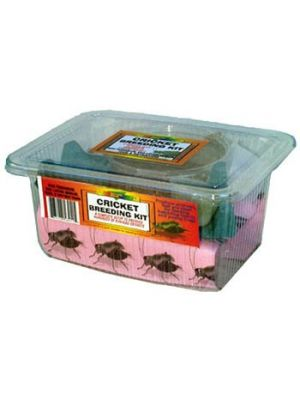 Nature Zone Cricket Breeding Kit
