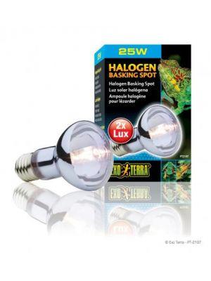 Exo Terra Sun Glo Halogen Bulb