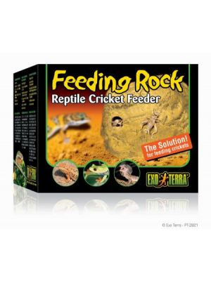 Exo Terra Cricket Feeding Rock