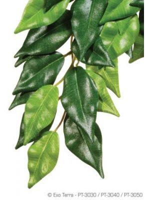 Exo Terra Ficus Hanging Plant Large