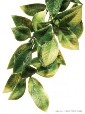 Exo Terra Mandarin Hanging Plant Large