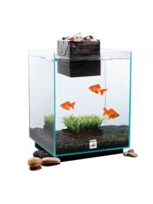 Fluval Chi Aquarium Set 5gl