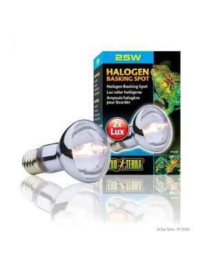 Exo Terra Halogen Basking Spot Lamp