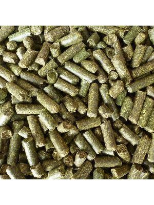 Painted Reptile High Fiber Alfalfa Pellet Bedding
