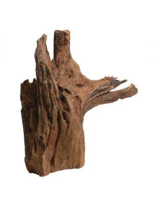 Malaysian Driftwood