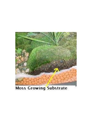 Moss Growing Substrate