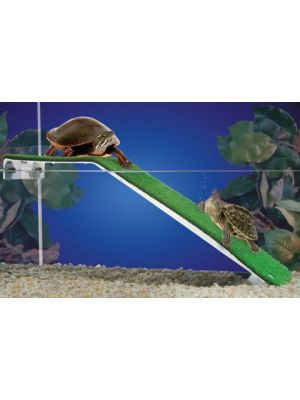 Penn Plax Turtle Platform