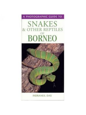 Snakes & Other Reptiles of Borneo