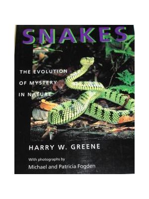 Snakes - The Evolution of Mystery in Nature