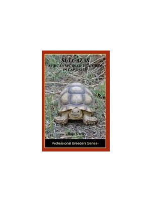 Sulcatas - Africian Spurred Tortoise in Captivity