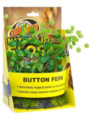 Zoo Med Button Fern Plant