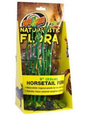Zoo Med Horsetail Fern Plant
