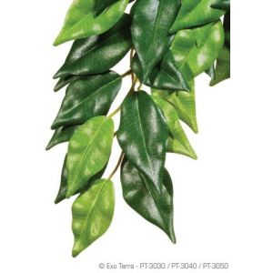 Exo Terra Ficus Hanging Plant Large