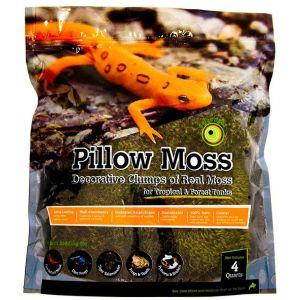 Galapagos Royal Pillow Moss 8 Quart